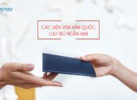 Những diện visa du lịch Hàn Quốc ngắn hạn